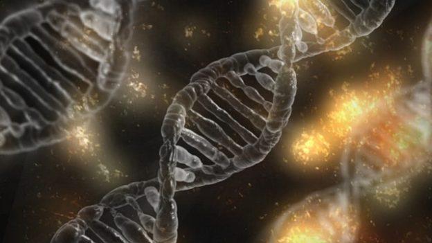 遺伝子診療